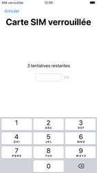 Apple iPhone SE (2020) - Internet et roaming de données - Configuration manuelle - Étape 14