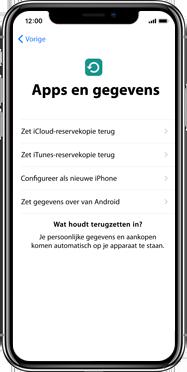 Apple iphone-xs-max-met-ios-13-model-a1921 - Instellingen aanpassen - Activeer het toestel en herstel jouw iCloud-data - Stap 15