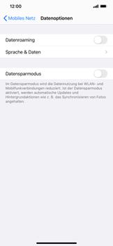 Apple iPhone XR - iOS 14 - Internet und Datenroaming - Deaktivieren von Datenroaming - Schritt 6