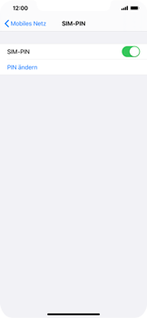 Apple iPhone 11 Pro Max - Startanleitung - So aktivieren Sie eine SIM-PIN - Schritt 8