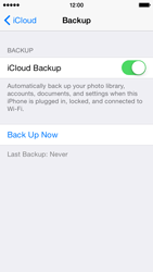 Apple iPhone 5s iOS 8 - Applications - Configuring the Apple iCloud Service - Step 13
