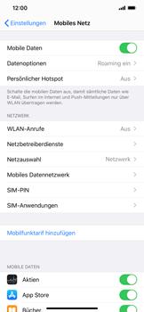 Apple iPhone XS Max - iOS 13 - Ausland - Auslandskosten vermeiden - Schritt 6