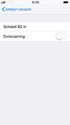 Apple iPhone SE - iOS 12 - Internet - Dataroaming uitschakelen - Stap 6