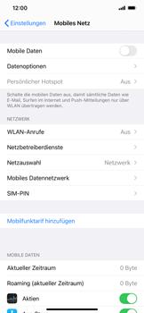 Apple iPhone 12 Pro - Internet und Datenroaming - Prüfen, ob Datenkonnektivität aktiviert ist - Schritt 4