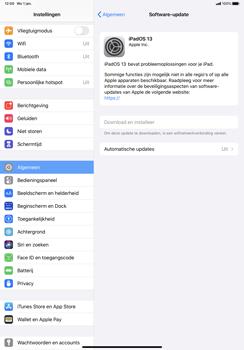 Apple iPad Pro 11 inch 2nd generation (2020) (Model A2230) - Software updaten - Update installeren - Stap 6