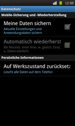 Samsung I9000 Galaxy S - Fehlerbehebung - Handy zurücksetzen - Schritt 7