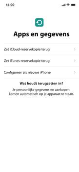 Apple iphone-11-model-a2221 - Instellingen aanpassen - Nieuw toestel instellen - Stap 21