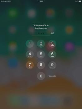 Apple ipad-air-met-ios-11-model-a1475 - Internet - Handmatig instellen - Stap 16