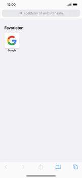Apple iPhone 11 - iOS 14 - internet - hoe te internetten - stap 12
