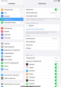Apple ipad-pro-10-5-inch-met-ipados-13-model-a1709 - Beveiliging en ouderlijk toezicht - Hoe wijzig ik mijn SIM PIN-code - Stap 4