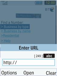 Samsung C3350 Xcover 2 - Internet - Internet browsing - Step 16