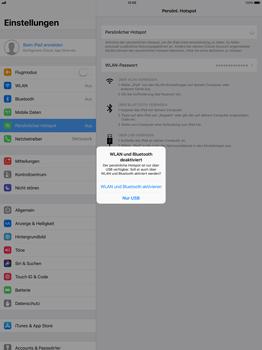 Apple iPad Pro 12.9 inch - Internet - Mobilen WLAN-Hotspot einrichten - 8 / 9