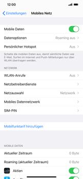 Apple iPhone 12 Pro - Internet und Datenroaming - Prüfen, ob Datenkonnektivität aktiviert ist - Schritt 5