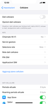 Apple iPhone 11 Pro Max - Internet e roaming dati - Come verificare se la connessione dati è abilitata - Fase 4