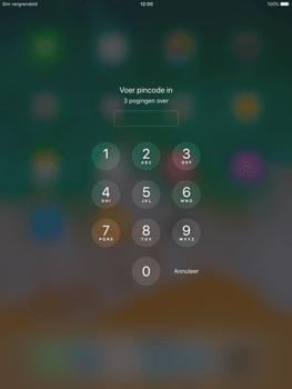 Apple ipad-air-met-ios-11-model-a1475 - Internet - Handmatig instellen - Stap 15