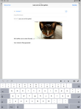Apple iPad Pro 12.9 inch - E-Mail - E-Mail versenden - 12 / 13