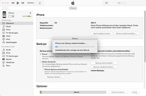 Apple iPhone 3GS - Software - Sicherungskopie Ihrer Daten erstellen - 2 / 2