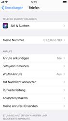 Apple iPhone SE (2020) - WiFi - WiFi Calling aktivieren - Schritt 5