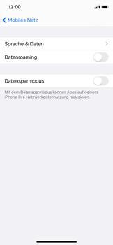 Apple iPhone XS - iOS 13 - Internet und Datenroaming - Deaktivieren von Datenroaming - Schritt 6
