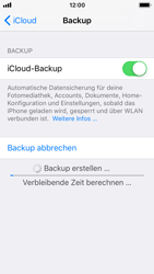 Apple iPhone SE - Software - iCloud synchronisieren - 8 / 10