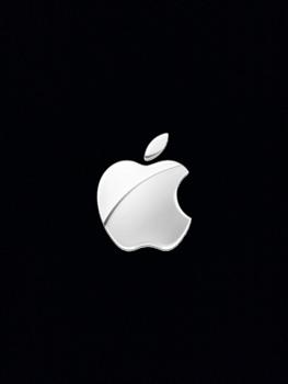 Apple iPad mini retina - Gerät - Zurücksetzen auf die Werkseinstellungen - Schritt 9