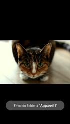 Doro 8031 - Photos, vidéos, musique - Envoyer une photo via Bluetooth - Étape 14