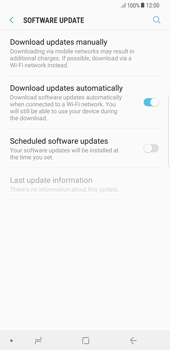 Samsung Galaxy S8 Plus - Android Oreo - Software - Installing software updates - Step 6