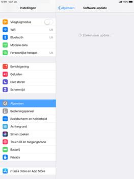 Apple iPad Mini 3 - iOS 12 - Toestel - Software update - Stap 6