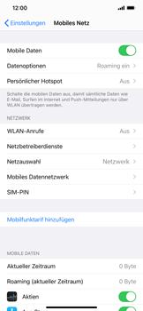 Apple iPhone XR - iOS 14 - Internet und Datenroaming - Deaktivieren von Datenroaming - Schritt 4
