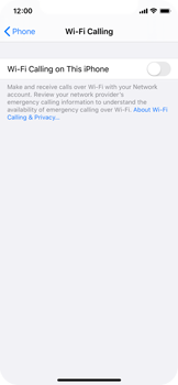 Apple iPhone 11 Pro - WiFi - Enable WiFi Calling - Step 6