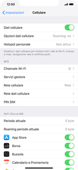 Apple iPhone XS Max - Internet e roaming dati - Come verificare se la connessione dati è abilitata - Fase 5
