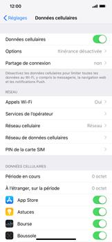 Apple iPhone XS Max - Internet et roaming de données - Comment vérifier que la connexion des données est activée - Étape 5