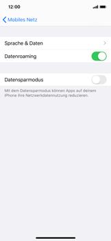 Apple iPhone XS - iOS 13 - Internet und Datenroaming - Deaktivieren von Datenroaming - Schritt 5