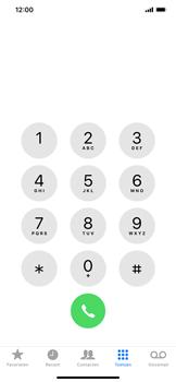 Apple iPhone XR - Bellen - Blokkeer internationale nummers - Stap 3