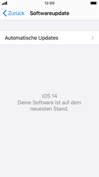 Apple iPhone SE - iOS 14 - Software - Installieren von Software-Updates - Schritt 6