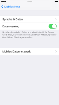 Apple iPhone 6 Plus - Ausland - Im Ausland surfen – Datenroaming - 8 / 10
