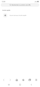 Samsung Galaxy Note20 Ultra 5G - Internet et connexion - Naviguer sur internet - Étape 6