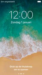 Apple iPhone SE - iOS 11 - MMS - handmatig instellen - Stap 14