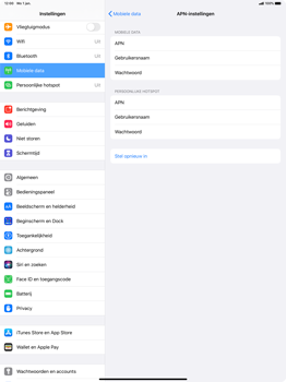 Apple iPad Pro 12.9 inch 4th generation (2020) (Model A2232) - Internet - Handmatig instellen - Stap 7
