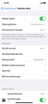 Apple iPhone 11 Pro - Internet und Datenroaming - Prüfen, ob Datenkonnektivität aktiviert ist - Schritt 5