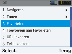 Samsung S3570 Chat 357 - Internet - Hoe te internetten - Stap 10