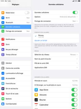 Apple iPad Air (2019) - iPadOS 13 - Internet et roaming de données - Comment vérifier que la connexion des données est activée - Étape 5