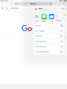 Apple ipad-mini-5-7-9-inch-2019-model-a2124-ipados-13 - Internet - Hoe te internetten - Stap 6
