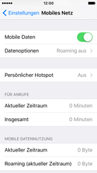 Apple iPhone SE - Ausland - Im Ausland surfen – Datenroaming - 6 / 10