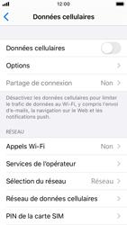 Apple iPhone SE - iOS 13 - Internet et roaming de données - Comment vérifier que la connexion des données est activée - Étape 4