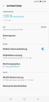Samsung Galaxy S8 Plus - Internet und Datenroaming - Prüfen, ob Datenkonnektivität aktiviert ist - Schritt 7
