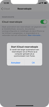 Apple iPhone X - iOS 13 - toestel resetten - back-up maken met jouw account - stap 13