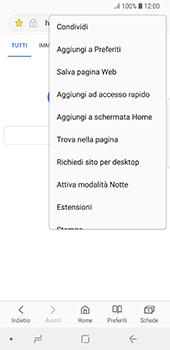 Samsung Galaxy S8 - Android Oreo - Internet e roaming dati - Uso di Internet - Fase 19