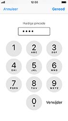 Apple iphone-se-met-ios-12-model-a1723 - Beveiliging en ouderlijk toezicht - Hoe wijzig ik mijn SIM PIN-code - Stap 7