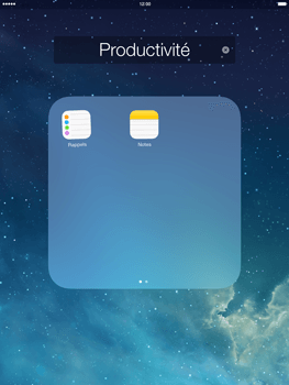 Apple iPad mini 2 - Prise en main - Personnalisation de votre écran d